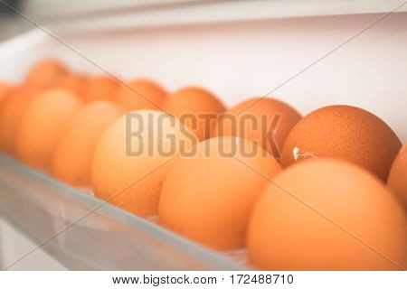 chicken egg from the refrigerator eggs on shelf of refrigerator