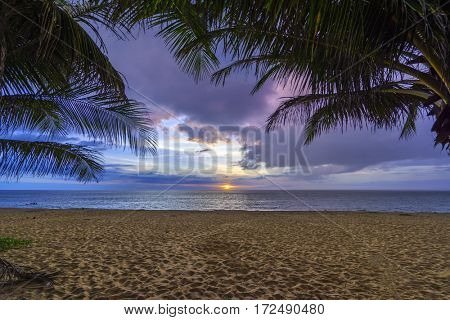 tropical beach with coconut palm tree in Thailand at sunset
