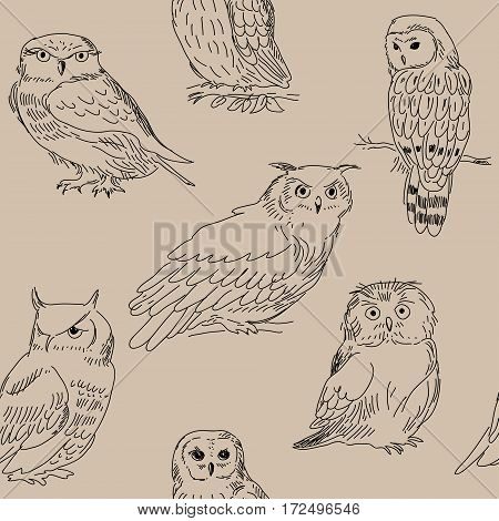 Seamless Pattern With Wild Forest Owls On Beige Background