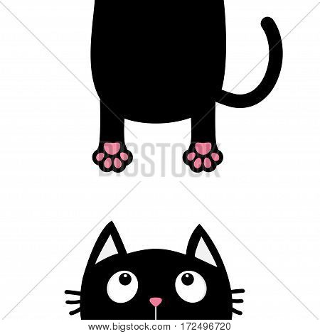 Black cat looking up. Funny face head silhouette. Hanging fat body paw print tail. Kawaii animal. Baby card. Cute cartoon character. Pet collection. Flat White background. Isolated. Vector