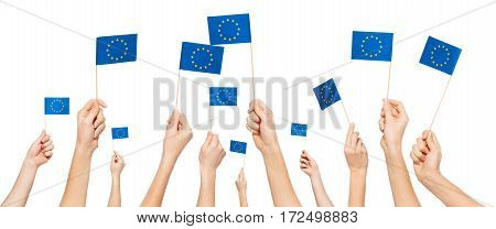 Hands holding and raising European Union flags isolated on white