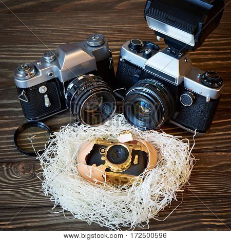 Concept Slr Cameras And Small Compact As Family In Nest
