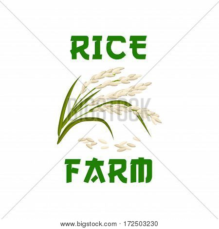Rice vector icon or poster of cereal grass plant or grass with rice seeds. Design for farm store, diet nutrition or staple food package, porridge ingredient or cuisine grocery market or shop emblem