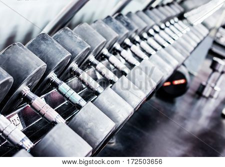 Rows of dumbbells in gym with hign contrast and monochrome color tone. Copy space