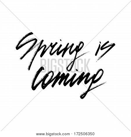 Spring is coming ink modern brush calligraphy isolated on white background. Postcard vector illustration
