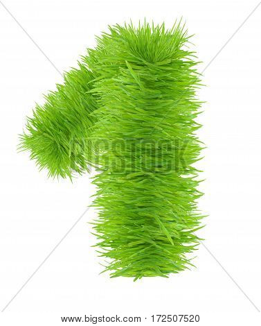 Numbers made of grass - 1 isolated on a white background