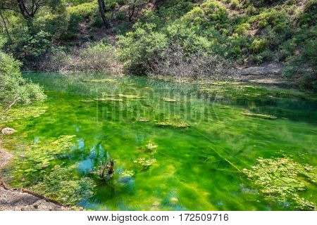 Green lake in Seven Springs (Epta Piges) area. Rhodes island Dodecanese Greece