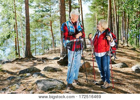 Aged couple deciding where to go next while hiking