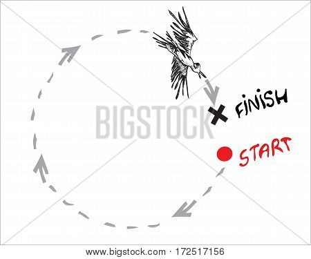 Illustration of a bird flying around in direction from start to finish. On white