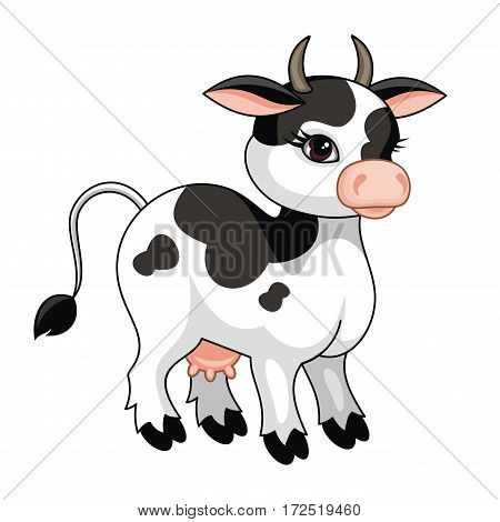 The vector image of a ridiculous cow in cartoon style isolated on a white background.