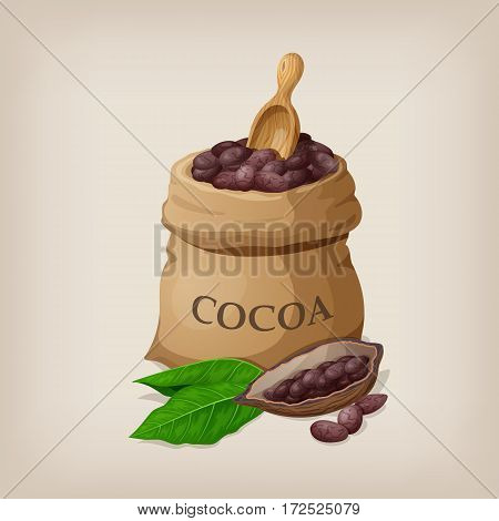Cocoa beans in a bag. Vector illustration