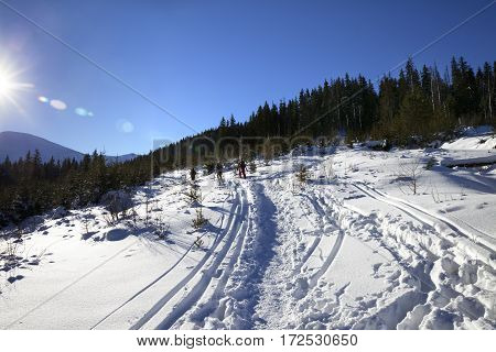 Freeriders With Skis Go On Footpath In Snow At Sun Winter Day