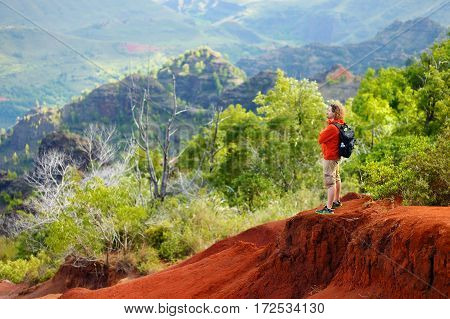 Young male tourist enjoying the view into Waimea Canyon also known as the Grand Canyon of the Pacific Kauai Hawaii