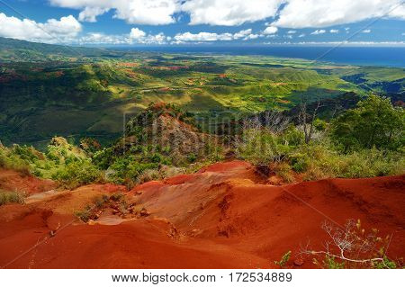 Stunning View Into Waimea Canyon, Kauai, Hawaii