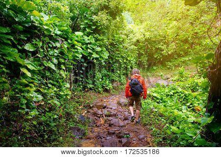 Young Male Tourist Hiking On The Famous Kalalau Trail Along Na Pali Coast Of The Island Of Kauai