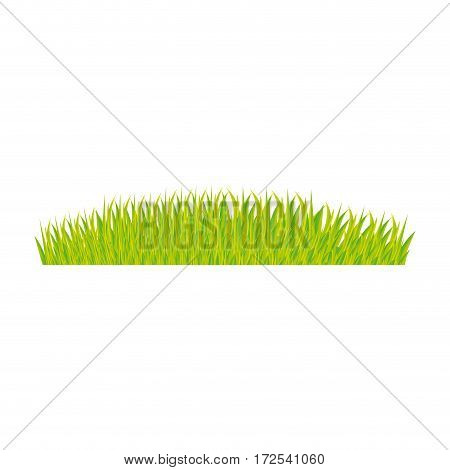 color background with green grass vector illustration