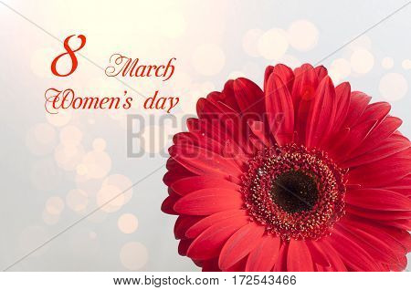 March, 8 Women's Day