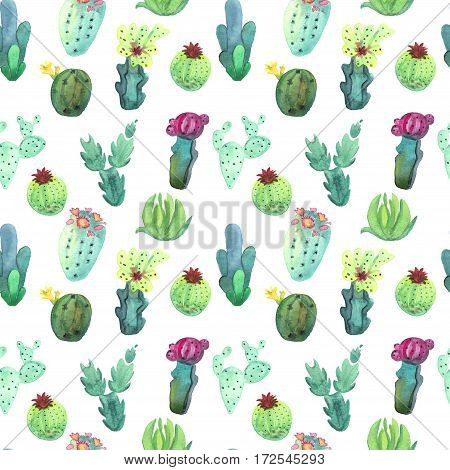 Watercolor hand drawn cactus succulent seamless pattern. White background. Beautiful vivid cute succulents. Ideal for sites fliers flyers brochures wedding invitation card banners etc.