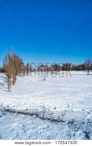 frosty winter sunny day and blue sky
