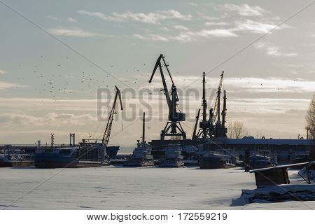 Seaport at sunny winter day - cargo cranes in ice harbor, silhouette, telephoto