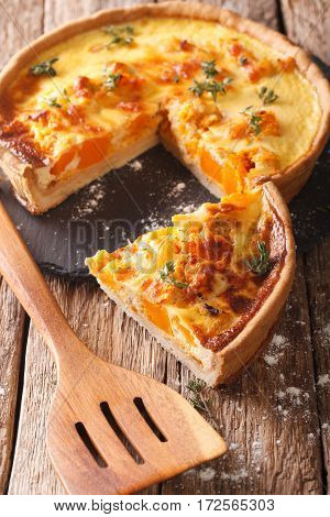 Sliced Savory Pie With Pumpkin, Cheese, Chicken And Herbs Closeup. Vertical