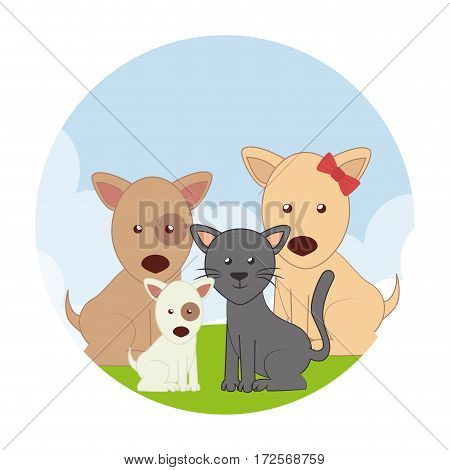 cute pets characters icon vector illustration design