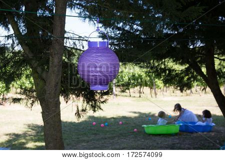A Violet Japanese Lantern Hung In A Tree With Children Playing At The Bottom Of The Garden