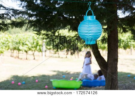 Birthday Of The Children They Play In The Garden And The Trees Are Decorated With Lanterns
