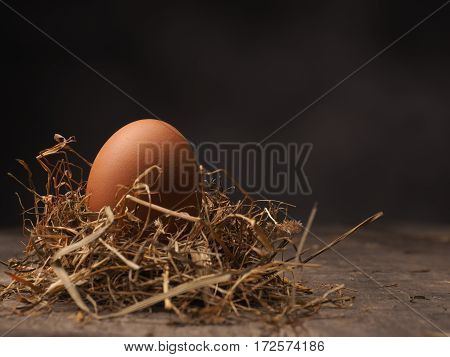 Organic brown egg in a nest on a wooden background