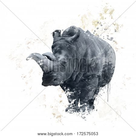Digital Painting of  White Rhinoceros