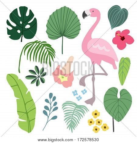 Summer tropical graphic elements with flamingo bird. Jungle floral illustrations, palm and monstera leaves and hibiscus flower, flat design, isolated stock vectors.