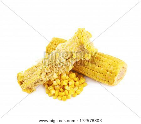 Composition of two corncobs isolated over the white background