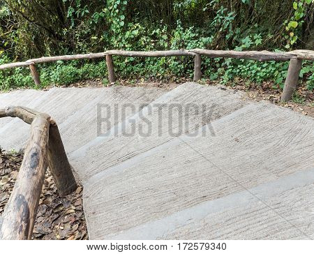 Curved concrete stairs with the wooden rail of the nature trail.