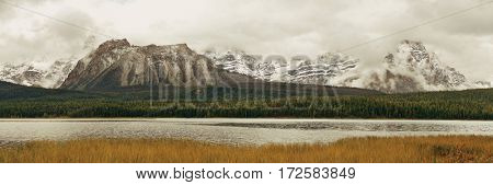 Mountains and forest panorama at Bow Lake with fog in Banff National Park, Canada.
