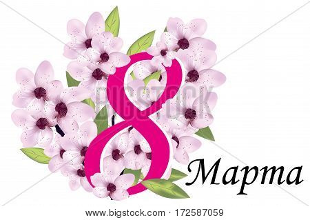 Cherry or sakura blossom with number eight and Russian phrase