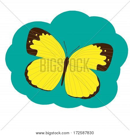The yellow butterfly Pieridae on a green-blue