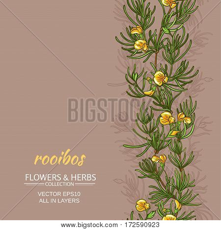 rooibos plant vector pattern on color background