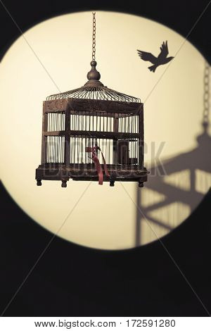 Antique Edwardian birdcage hanging in spotlight with shadow and bird flying away