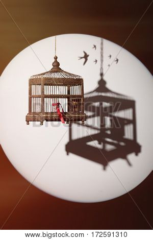 Antique Edwardian birdcage, open door tied with red ribbon with shadow and birds in flight silhouette in background