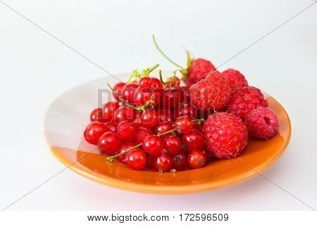 Berries red currants and raspberry on a plate. Isolated on white background. Closeup.