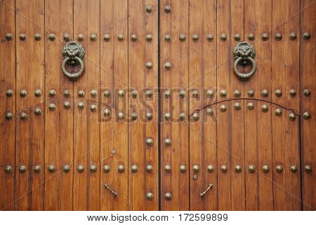 doorknob shapes as two lions on a wooden door