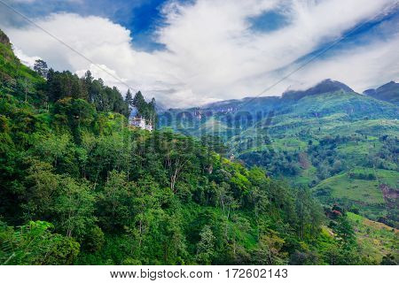 Mountain overgrown tropical forest in the central part of the island of Sri Lanka.
