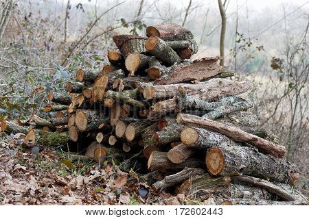 Stack of wood for the fireplace in the countryside