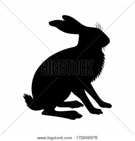 Hare ( shade picture ) on white background