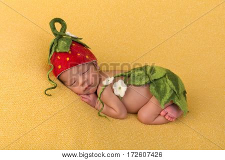 One week old newborn baby of mixed race sleeping on a soft yellow blanket