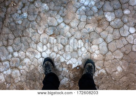 Cracked land texture. Beautiful background for your project