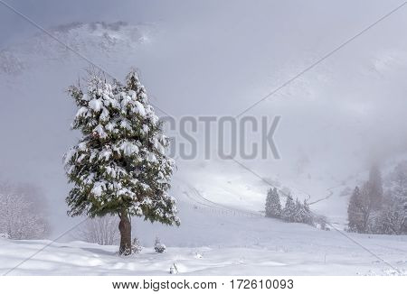 a snow day in natural park of Urkiola