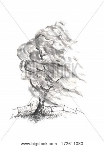 Willow tree in the wind Japanese style sumi-e ink painting. Great for greeting cards or texture design.