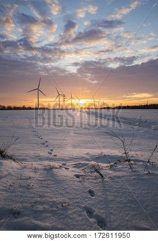 Landscape winter sun rising energy from windmills