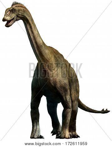 Shunosaurus dinosaur from the Jurassic era 3D illustration